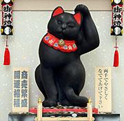 幸せを呼ぶ黒猫様
